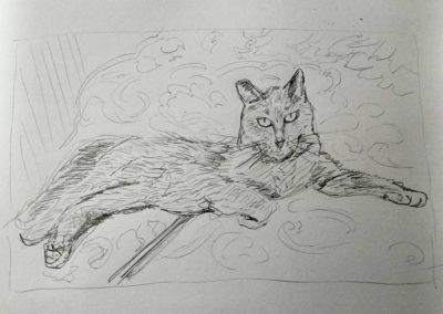 Bentley the cat