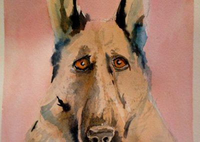 Concerned dog